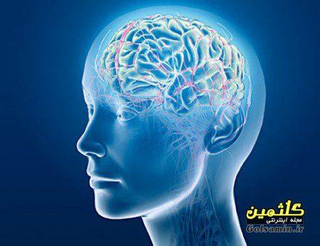 ۱۰ عامل که باعث نابودی مغز می شوند