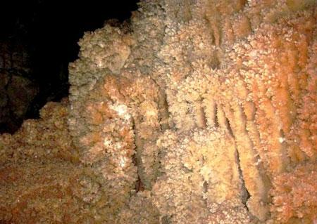 غار نباتی یزد،غار نباتی