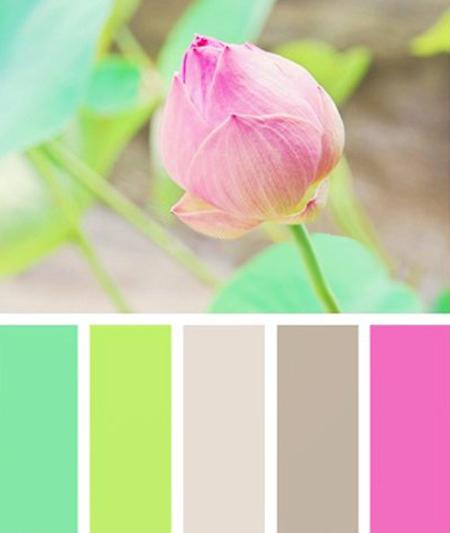 دکوراسیون رنگ صورتی, ترکیب رنگ های مناسب چیدمان صورتی