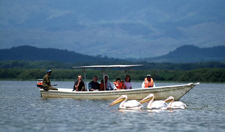کنیا,کشور کنیا,دریاچه نیواشا کنیا