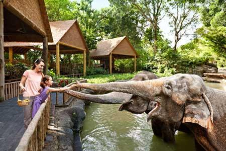مکانهای تفریحی سنگاپور