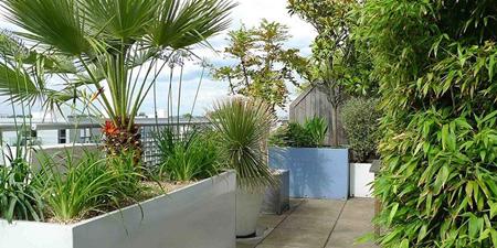 نگهداری از گل و گیاهان آپارتمانی, نحوه نگهداری از گل ها در بالکن و تراس