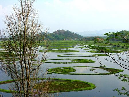دریاچه شناور,دریاچه لوکتاک,عکس های دریاچه شناور