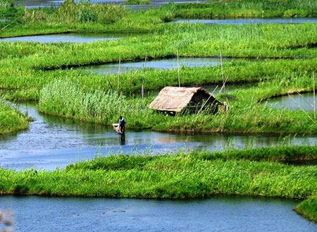 دریاچه شناور,دریاچه شناور از دیدنی های هند,عکس های دریاچه شناور