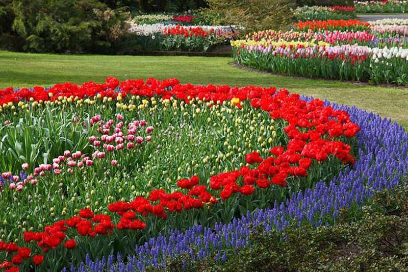 باغ گل ها اصفهان